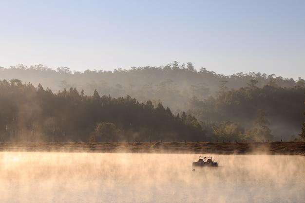 朝の湖と松の森