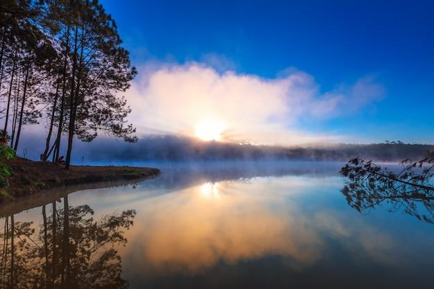 タイのチェンマイタイのワットチャン島の朝の湖と松の森