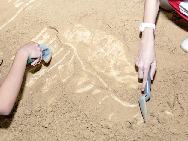 恐竜の化石を発掘する