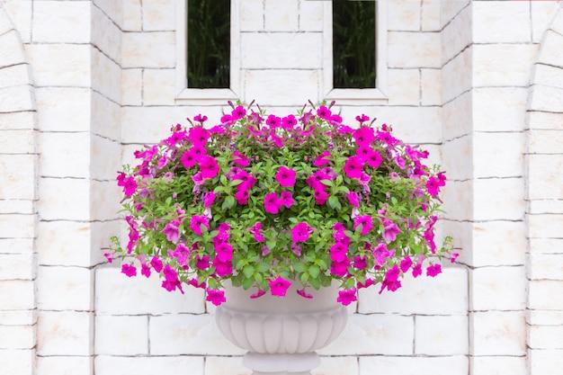 レンガの壁で装飾的なローマの植木鉢に花します。