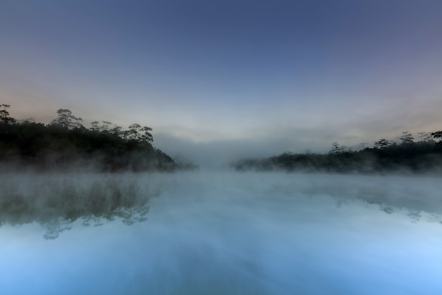朝の時間で湖と松の森