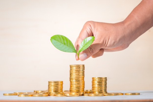 保存、ビジネスコンセプトの背景を育てる
