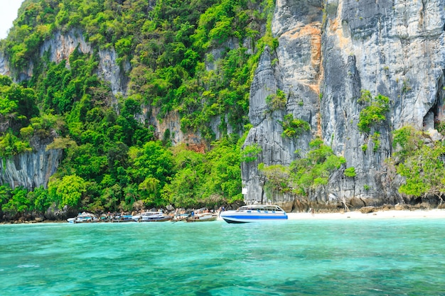 モンキービーチ、ピピ島、タイ