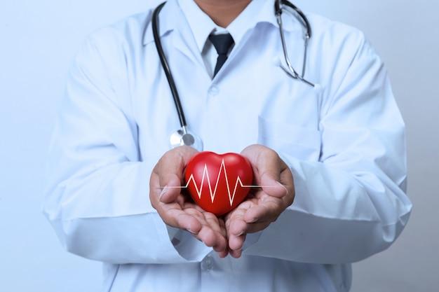 赤いハートを保持している医者