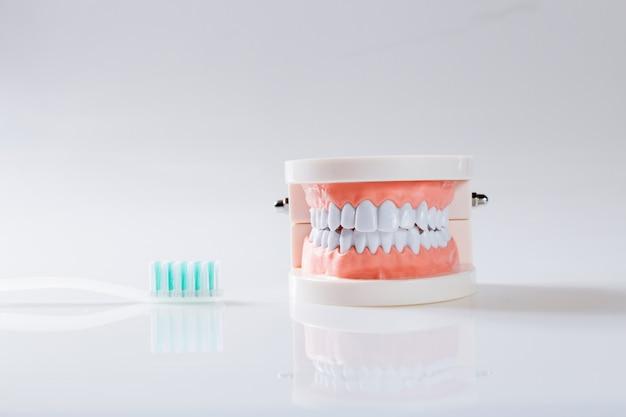 歯科コンセプト健康機器用具デンタルケア