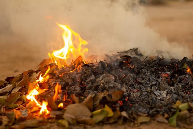 秋の落ち葉のたき火