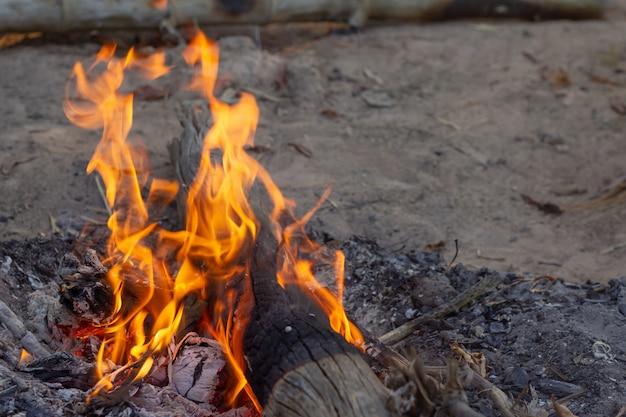 燃える火の中を丸太のイメージ。燃える火の炎。
