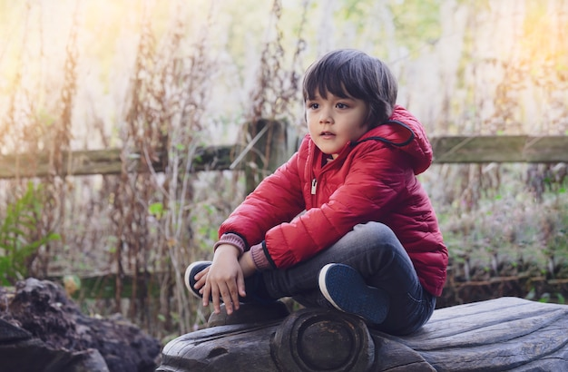 Портрет на открытом воздухе очаровательны малыш мальчик сидит на деревянной статуе с размытым фоном дикой травы цветка, милый ребенок, носить красный пиджак, играя на открытом воздухе осенью, концепция развития малыша