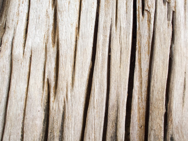 Крупным планом деталь текстурированной коры старого деревянного трещины