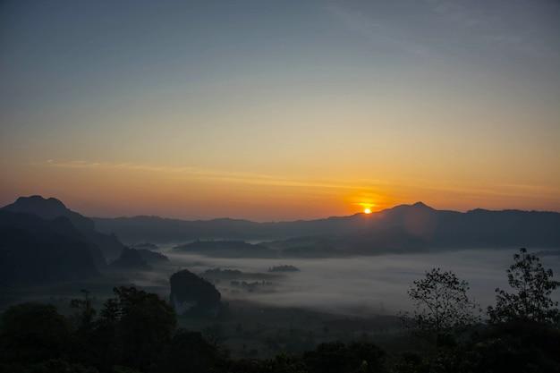 朝の日の出彼らは白いカーペット、自然、美しさと静けさのような霧があります。