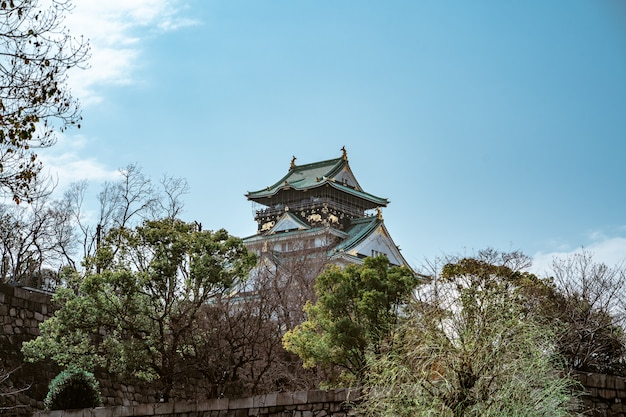 ぼやけた背景を持つ日本の大阪城