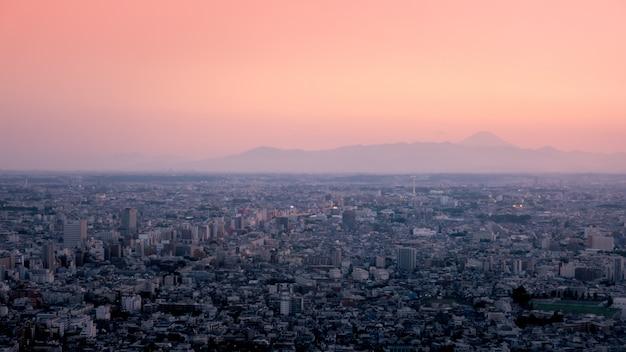Метрополия города токио с целью фудзи сан на заднем плане.