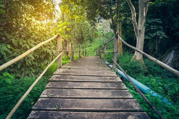 森林ハイキングの道ヴィンテージ感情の木の橋の背景