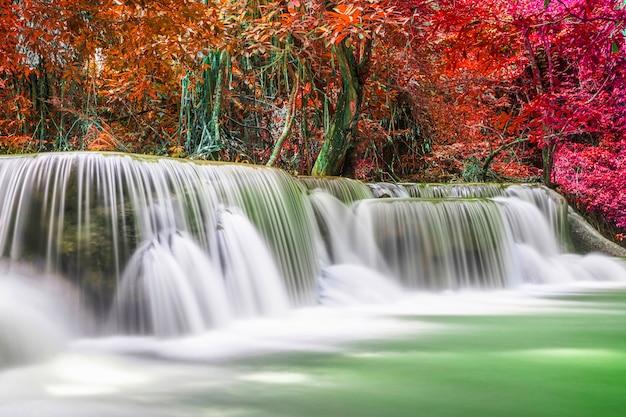 Красивый пейзаж природы водопада красочного глубокого леса в летний день