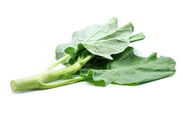白い背景に中国のケール野菜