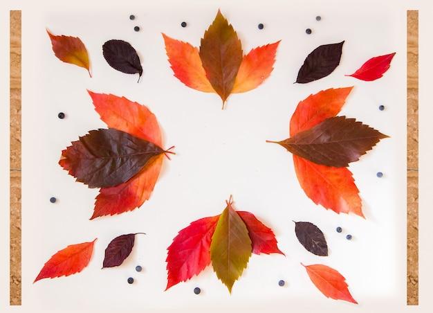 モックアップのカラフルな秋アイテムと素敵なフレーム