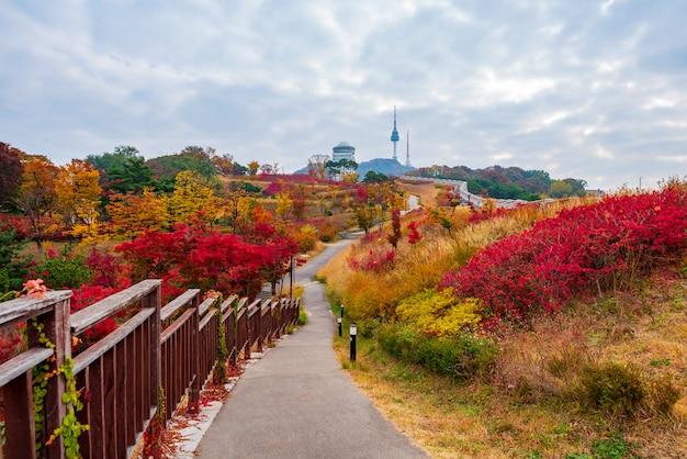 Осень башни намсан в сеуле, южная корея