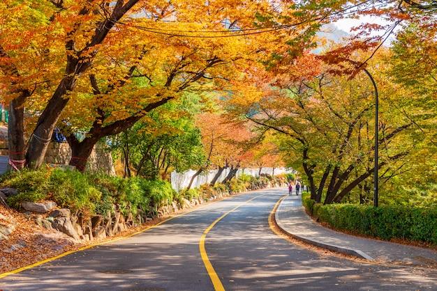 韓国ソウルの南山タワーの秋