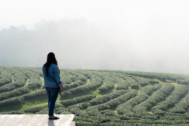 白い霧と最高級の茶園を表示する木製の床に立っている美しい女性