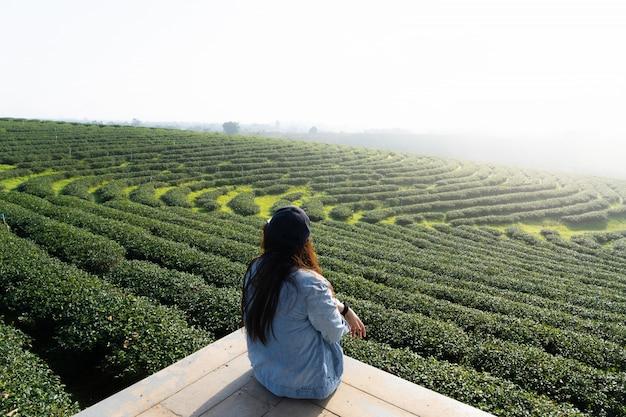 朝の白い霧と最高級の茶園を表示する木製の床に座って美しい女性