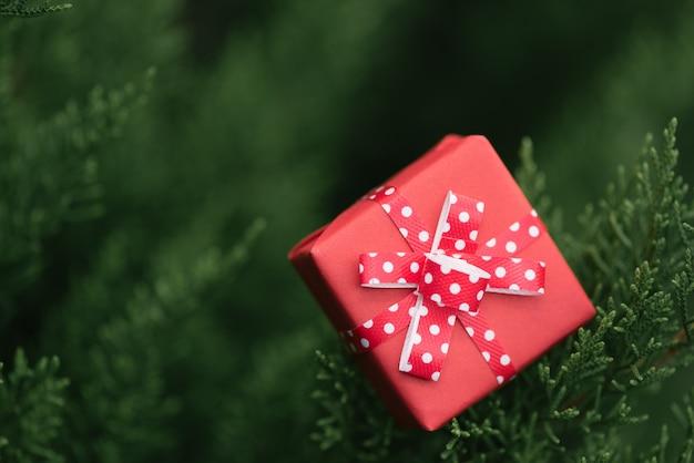 Красная подарочная коробка на зеленом листе.