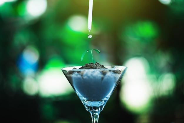 水滴、自然とケアのコンセプトを持つガラスで成長している芽