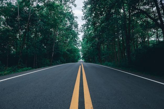 黄色のダイビングラインと森の背景を持つアスファルト道路
