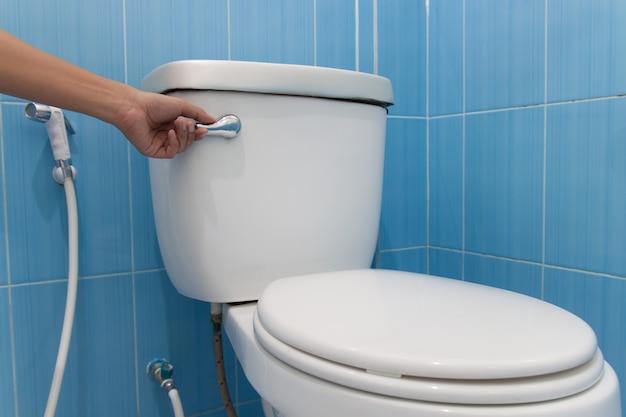 フラッシュとトイレ。を押してフラッシュします。