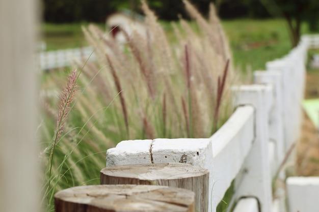 農場で白いフェンス