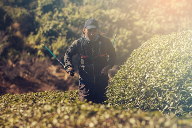 Бегуны. молодые люди тропа работает на горной тропе. тропа приключений на горном стиле.