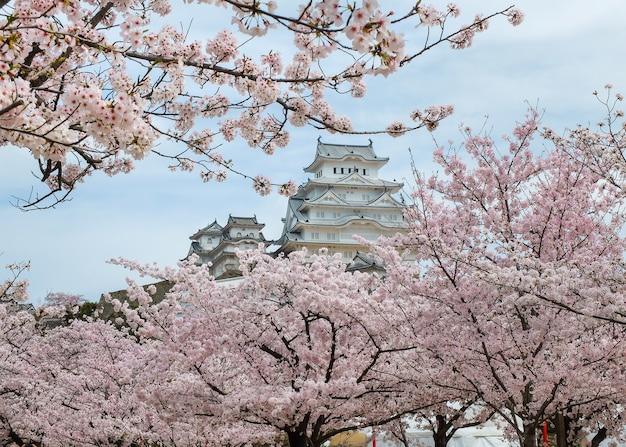 桜の開花期の姫路城、日本