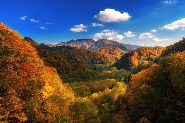 東北の秋のカラフルな山
