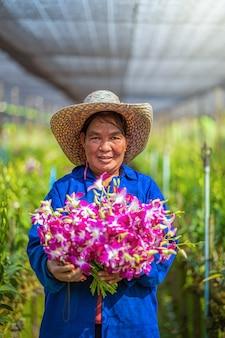 蘭園芸農場のアジアの庭師の肖像画、庭の農場で咲いている紫色の蘭、花の束を保持している幸福な労働者、バンコク、タイの農業の紫色の蘭。