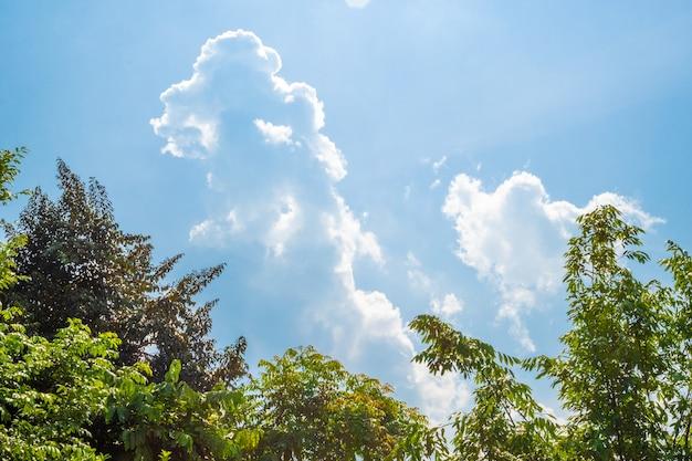 Солнечное голубое небо с мягкими облаками и ярким солнцем на фоне зеленых деревьев