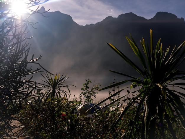 美しい自然の風景の背景