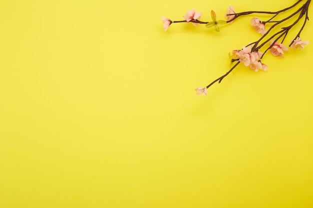 Цветы сливы на желтом фоне