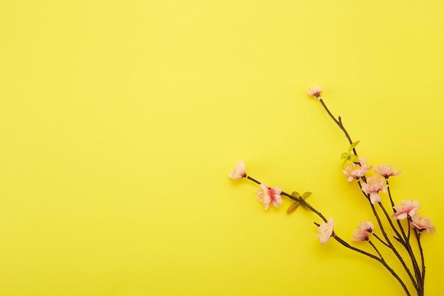 黄色の背景に梅の花