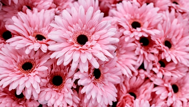 ピンクの花を背景に使用