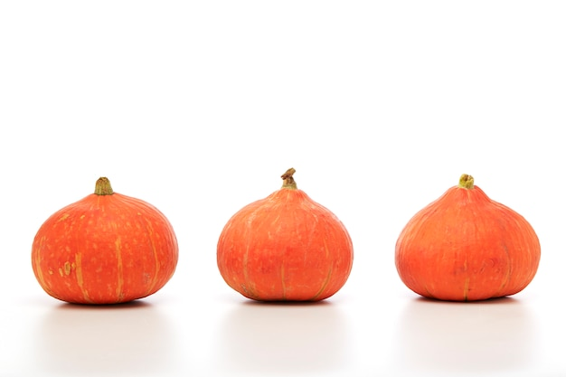 白い背景の上のオレンジ色のカボチャ
