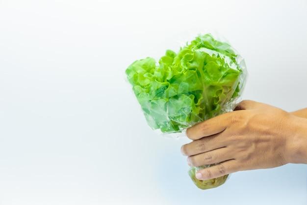 白い背景に緑色の野菜
