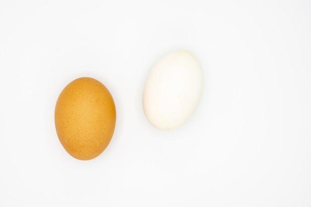 白地に白と茶色の卵