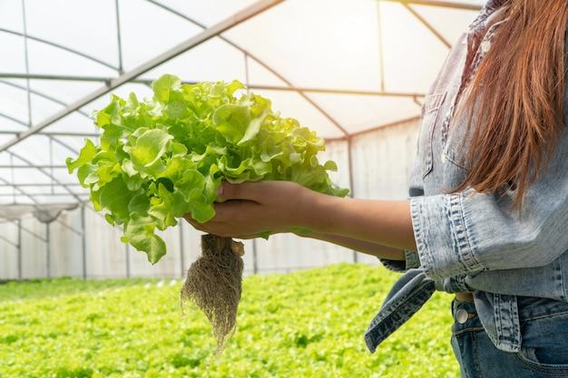 温室の水耕栽培システムで品質を確認するために生野菜サラダを保持しているアジアの農家の女性。