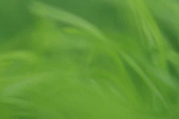 テクスチャ背景の葉