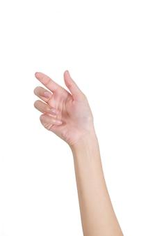 Женщина пустая рука с передней стороны, изолированные на белом