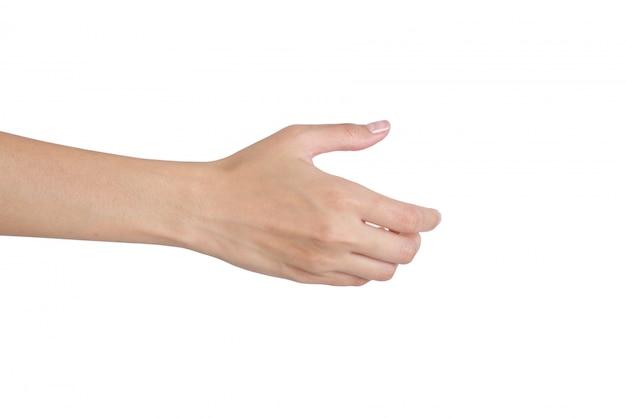 白で隔離されるハンドシェイク裏面側に手を与える女性