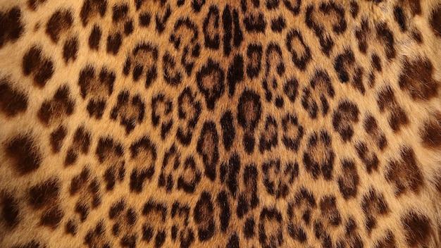 Реальный тигровый мех