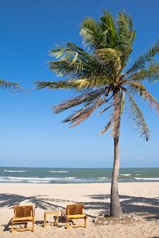Тропический пляж с кокосовой пальмой. с голубым небом