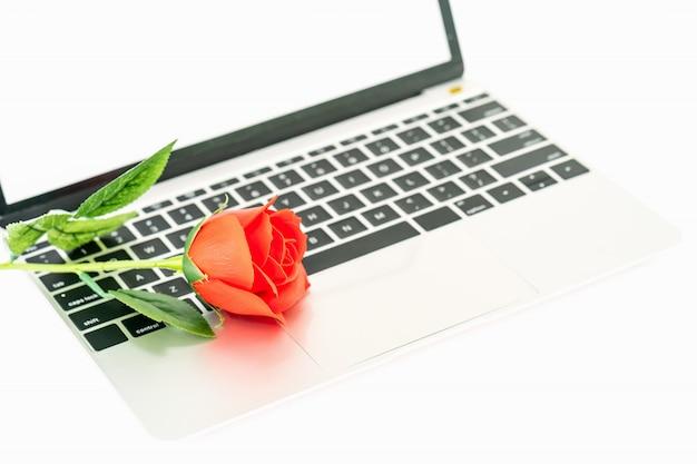白のラップトップ上の赤いバラ