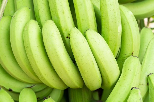 Зеленые гроздья кавендишского банана