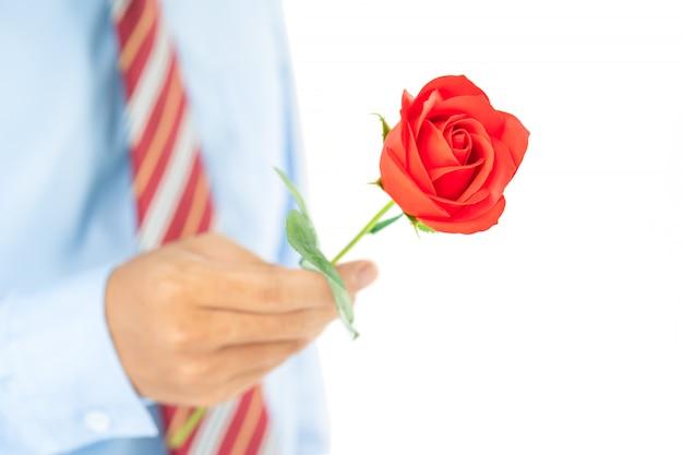 白地に手に赤いバラを持って男